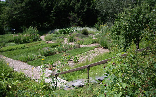 Abdoe herb garden photo
